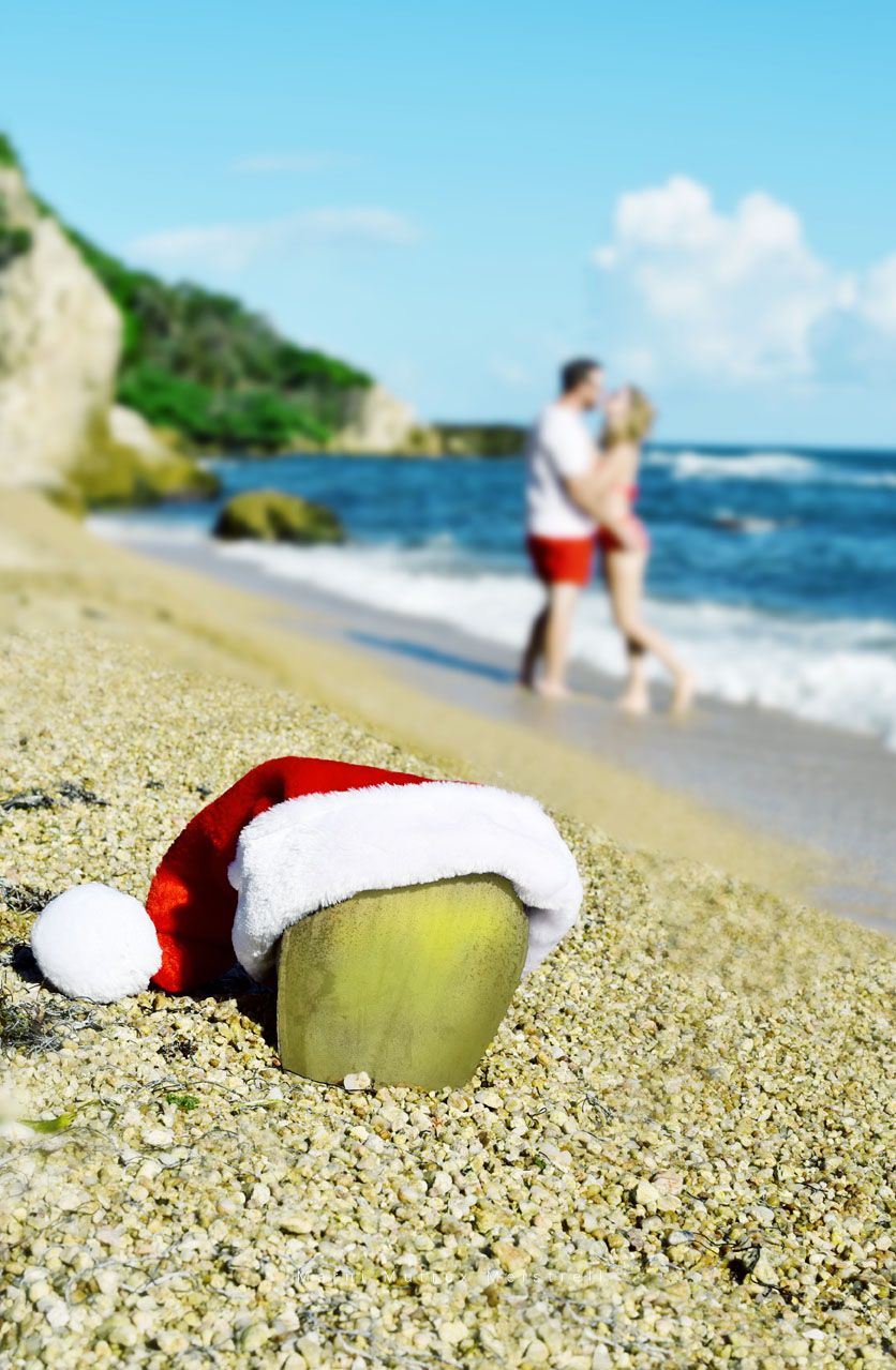 Beach Christmas Photo Shoot Ideas