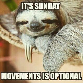 Lazy Sunday Memes - Enjoy Your Lazy Sunday! - Slapwank | Funny sunday memes,  Sunday humor, Morning quotes funny