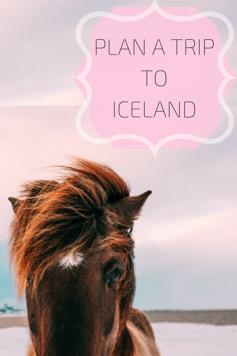 SkyScanner | Cheap flights | Budget Travel | Plan a trip to Iceland