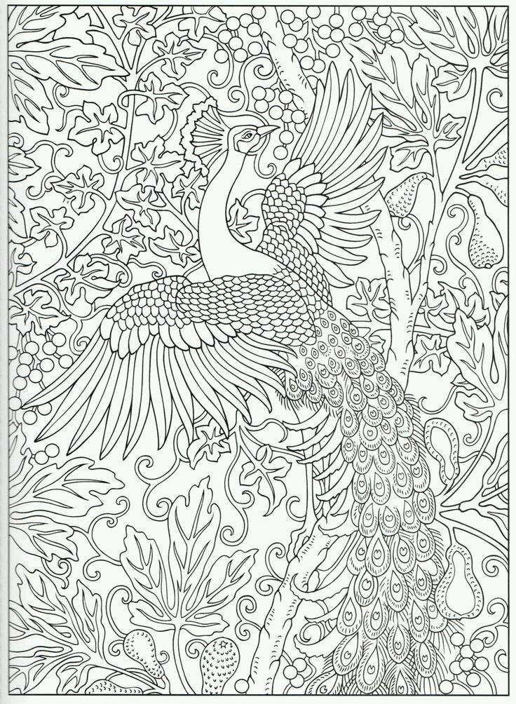 Pin By Stefanie Kwantes On Dieren Kleurplaten Pinterest Peacocks