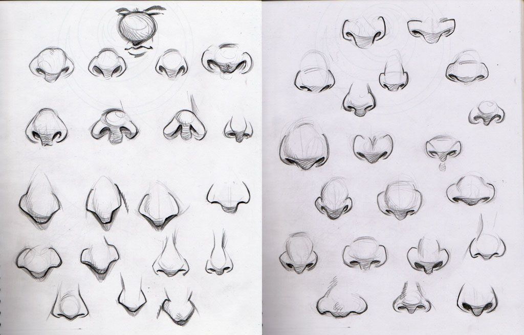 Dibujar La Nariz Dibujos Faciales Dibujo Nariz Dibujar Narices