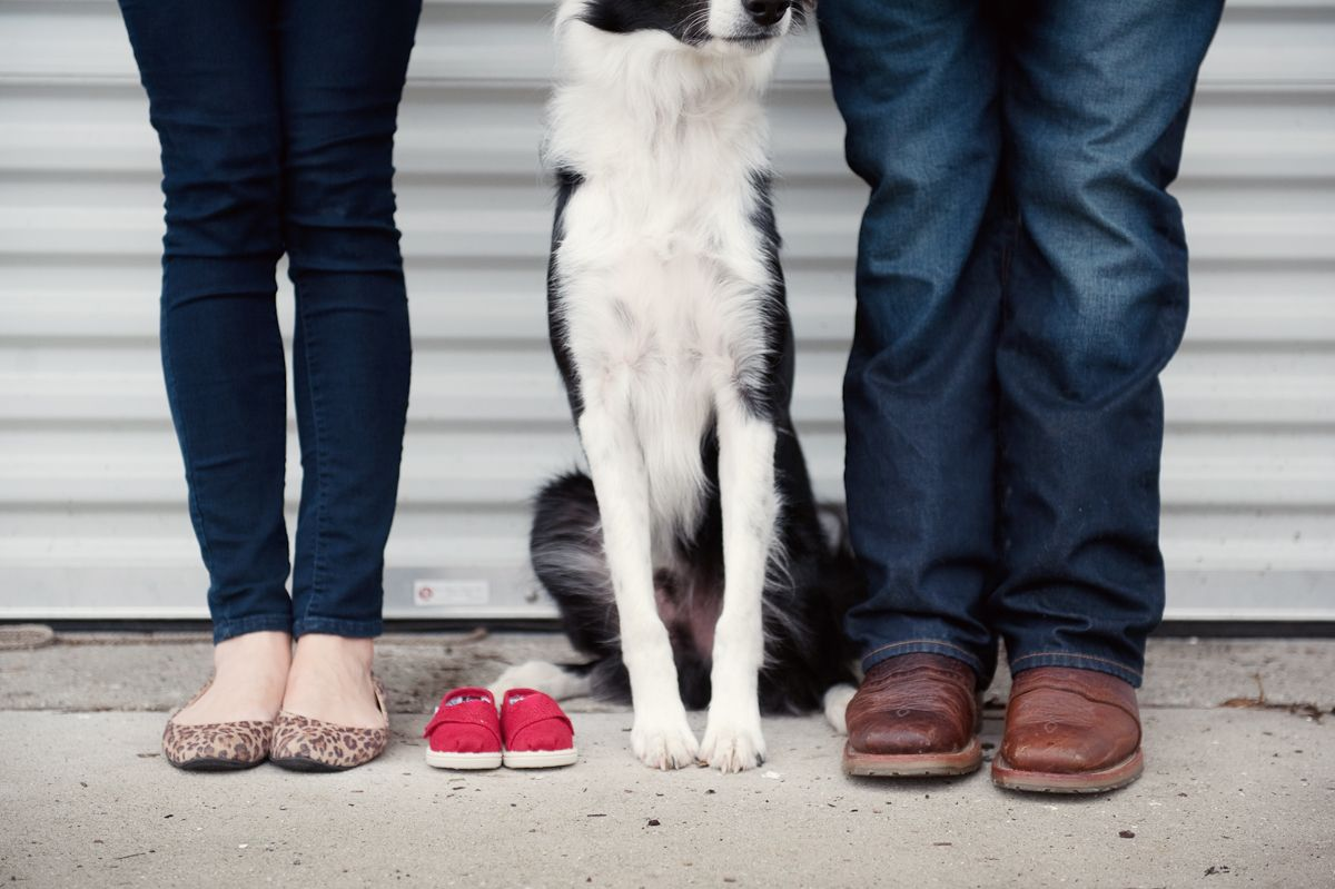10 baby announcements with dogs that will make you squee for Unique picture ideas for facebook