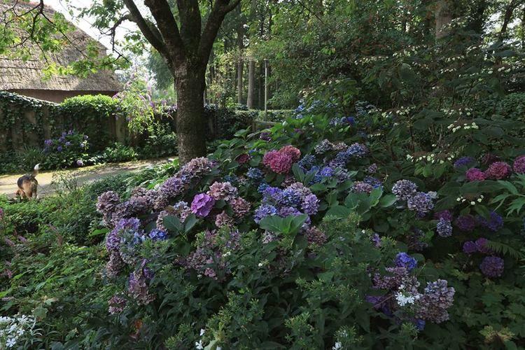 El Blog de La Tabla: Jardines muy privados: De Sallandse Landschapstuin