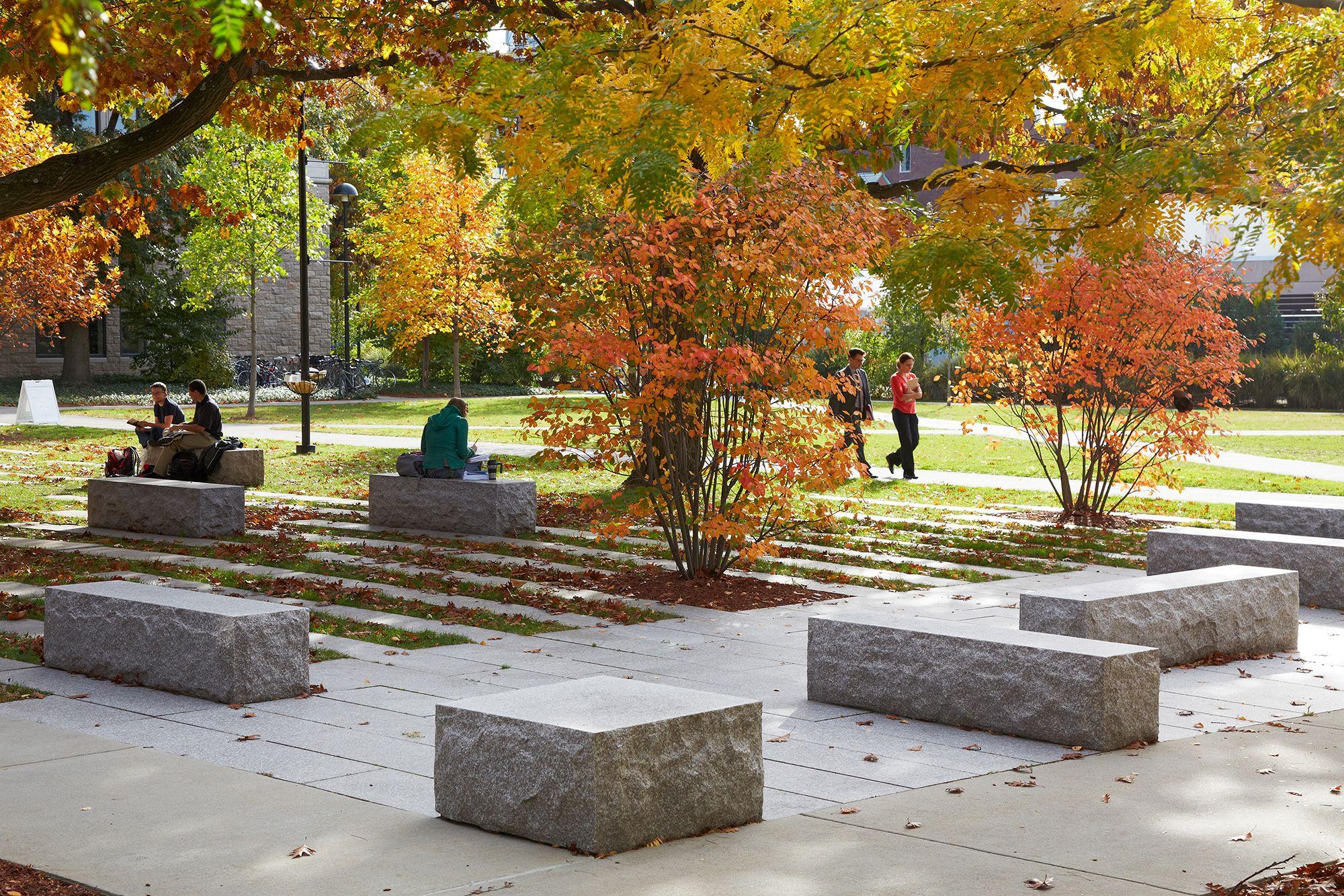 Harvard Rockefeller Hall — STIMSON Campus landscape