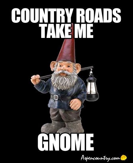 Funny Gnomes: Garden Humor: Little Gnome Quotes #1