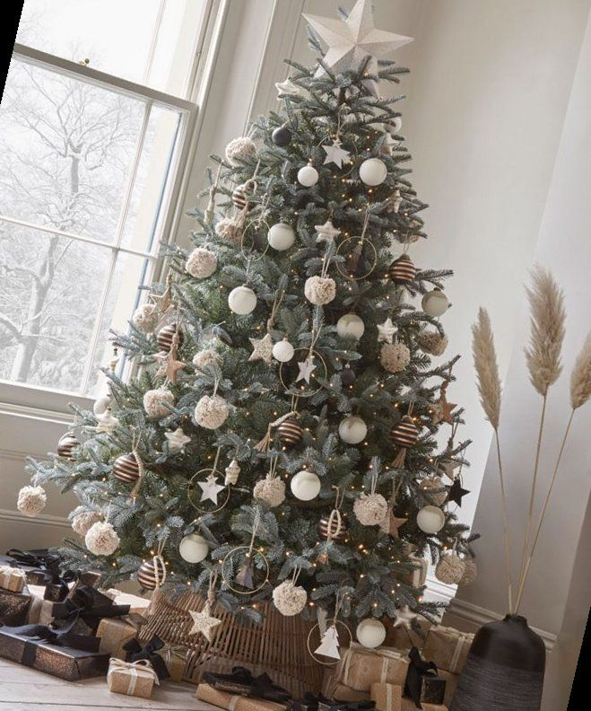 24+ Christmas Tree Trends  – The Most Fashionable