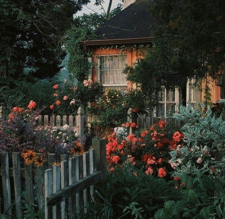 #عشوائي # عشوائي # amreading # books # wattpad | Cottage ...