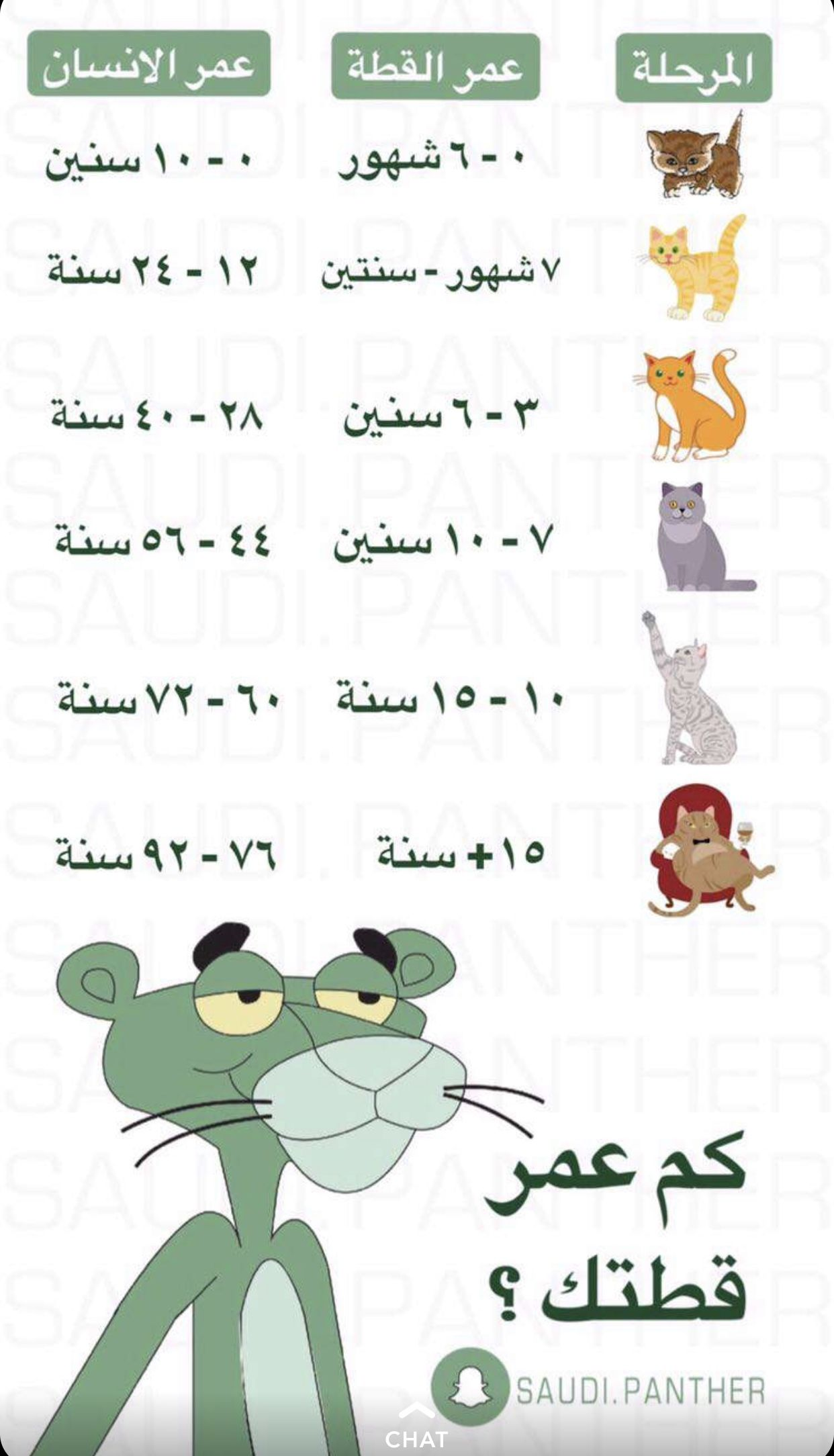 Pin by Re0o0iry on Informationsمعلومات Learning, Words