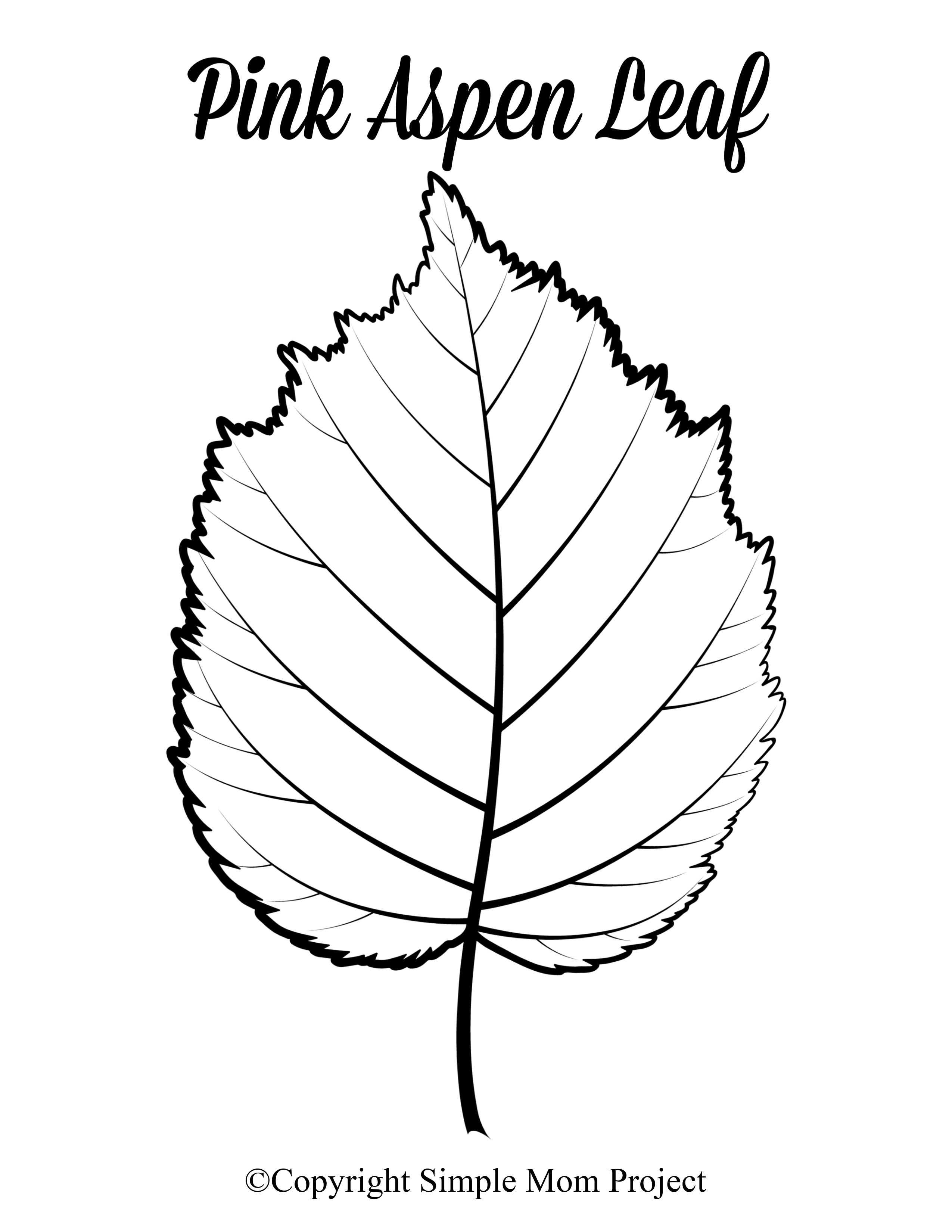Download Fall Stencils Free Printable