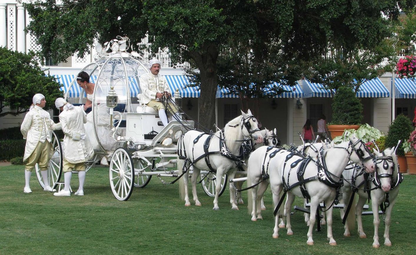 Disney world wedding how much does it cost to have a