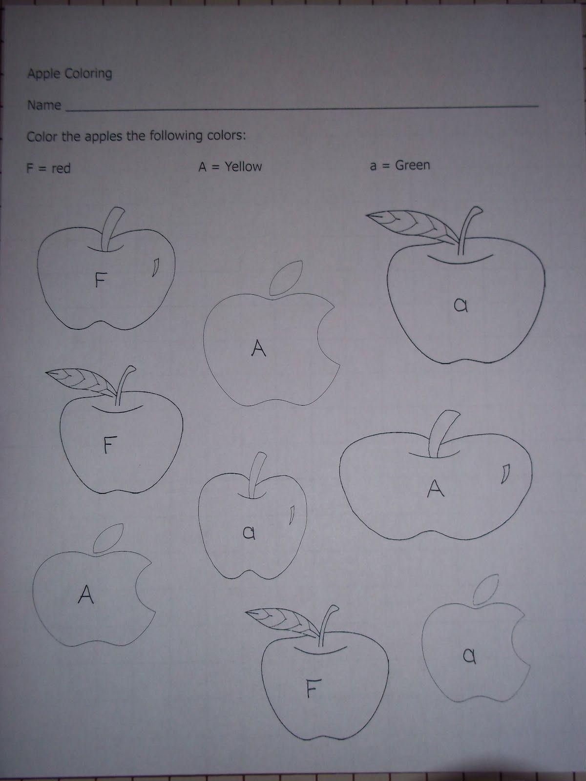 Apple Coloring Worksheet