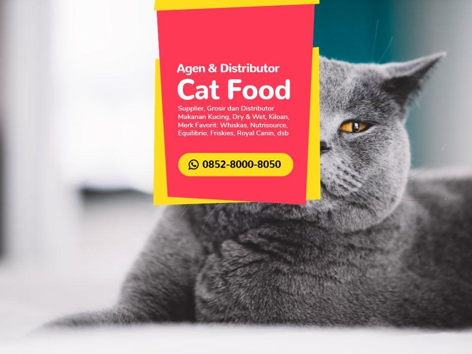 Sale Wa 0852 8000 8050 Pusat Grosir Makanan Kucing Jakarta Makanan Kucing Makanan Anjing Kesejahteraan Hewan