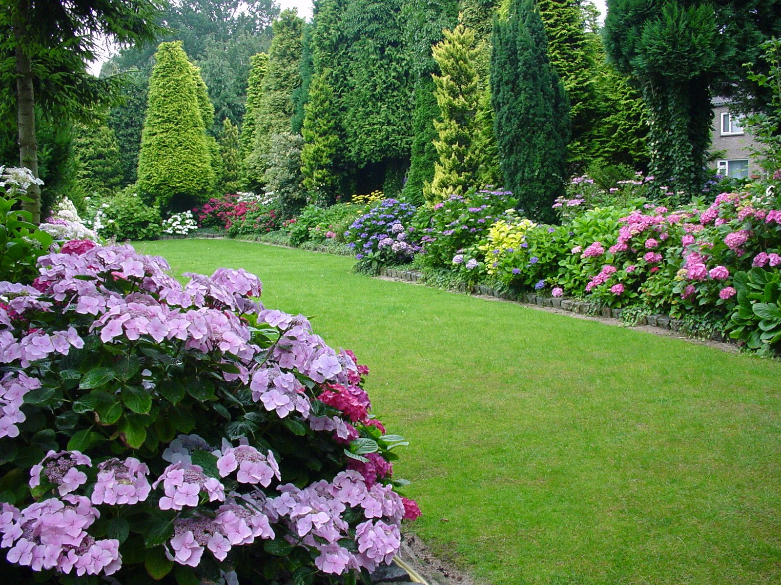 Image gallery hydrangea garden design for Landscape garden idea nottingham