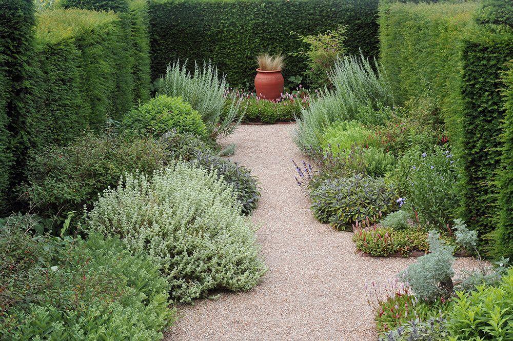 42+ Backyard hedge ideas ideas in 2021