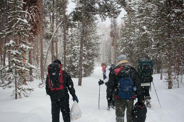 Yurt Wyoming in 2020 | Winter camping, Park city utah, Yurt