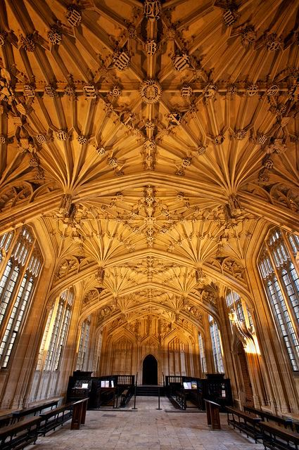 Beautiful Libraries and Bookshops...The Divinity School, part of the Bodleian Library in Oxford, England, photo by archidave.