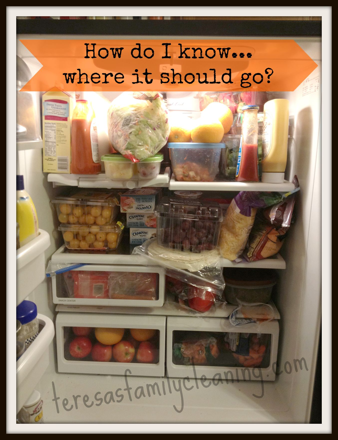Where To Store Food In The Refrigerator