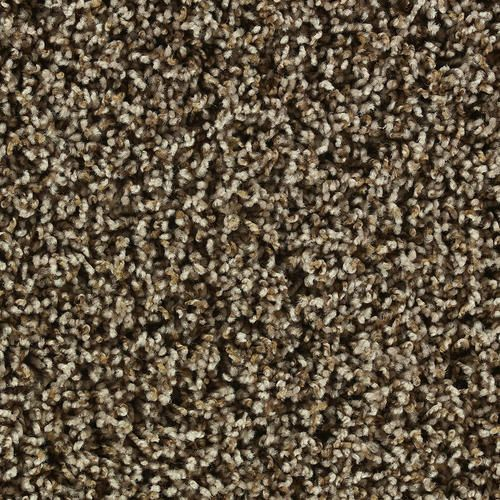 Shaw Color Debut Frieze Carpet 12ft Wide Cabana Frieze Carpet Affordable Carpet Carpets Online