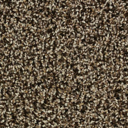 Shaw Color Debut Frieze Carpet 12ft Wide Cabana Frieze Carpet Affordable Carpet Carpets Online