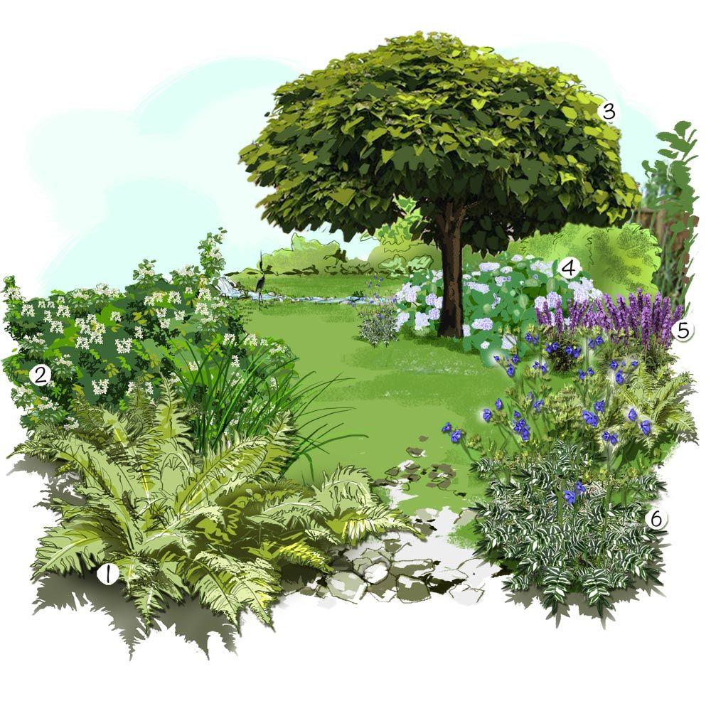Projet am nagement jardin un jardin rafraichissant for Plan amenagement jardin rectangulaire