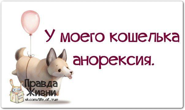 Прикольные фразочки в картинках #15125 » RadioNetPlus.ru развлекательный портал