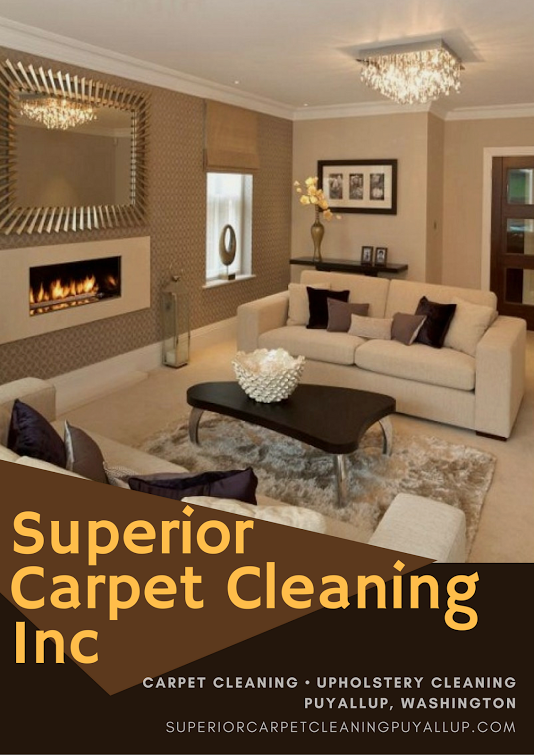 services offered carpet steam cleaning in puyallup wa upholstery rh pinterest com