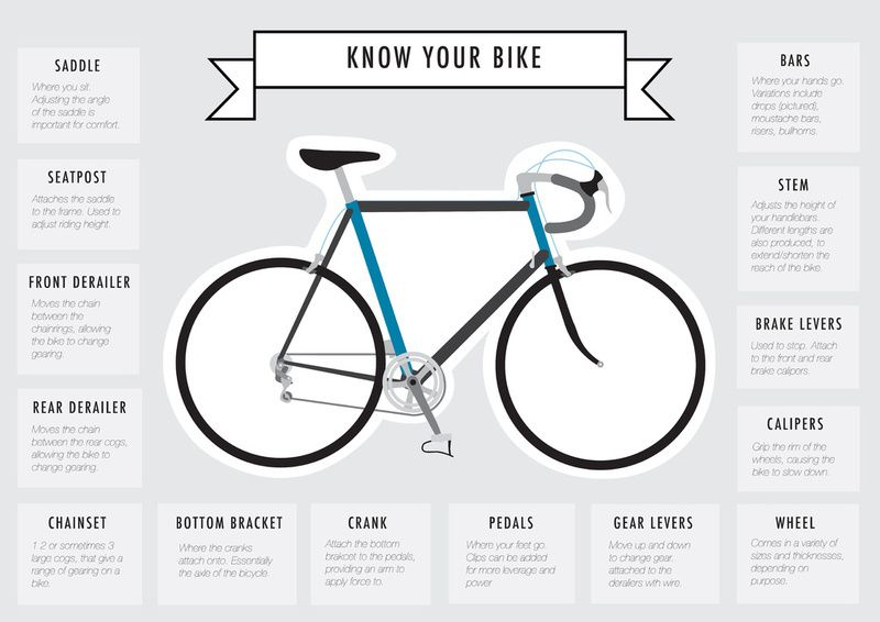 Know Your Bike Infographics Bike Bicycle Bicycle Design