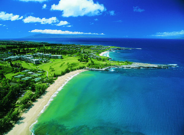 Do more than just snorkel with the sea turtles in Kapalua, learn about them their nests and the sand.