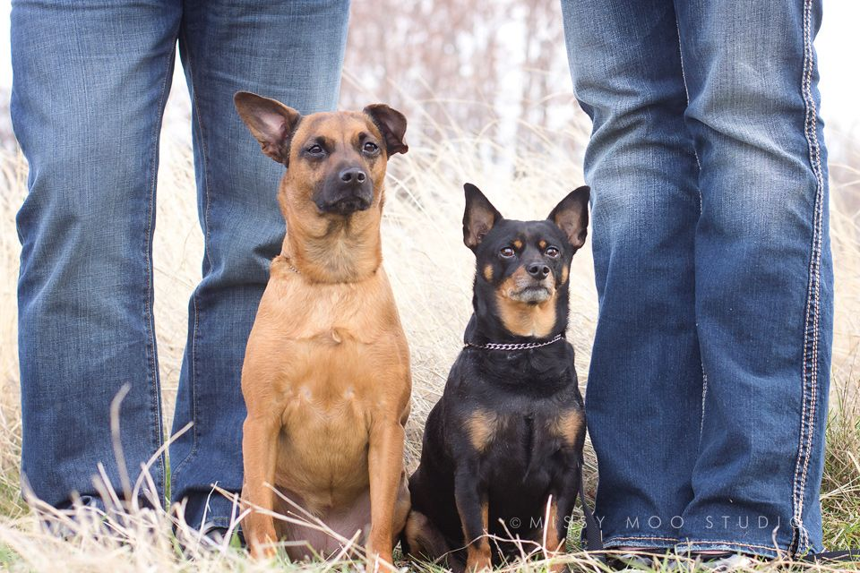 Love doggy/owner photos!