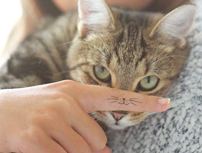 Photo of ▷ 1001 + Ideen zum Thema Katzen Tattoo, aus denen Sie eine Inspiration schöpfen könnten
