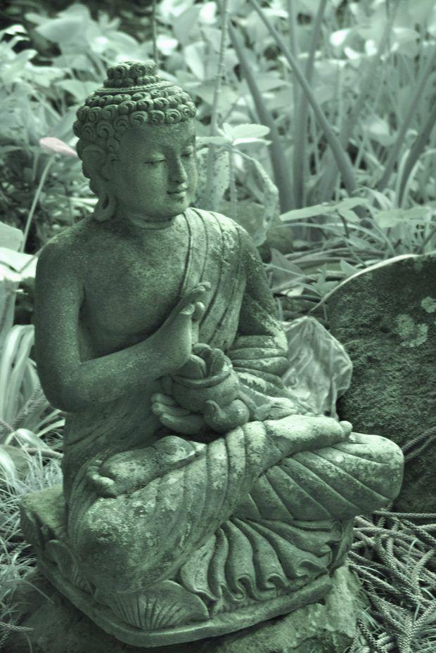 Posturas De Buda Y Sus Significados Buda Pinterest