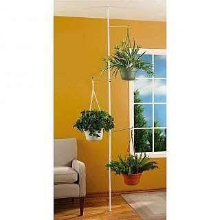 Floor To Ceiling Plant Hanger
