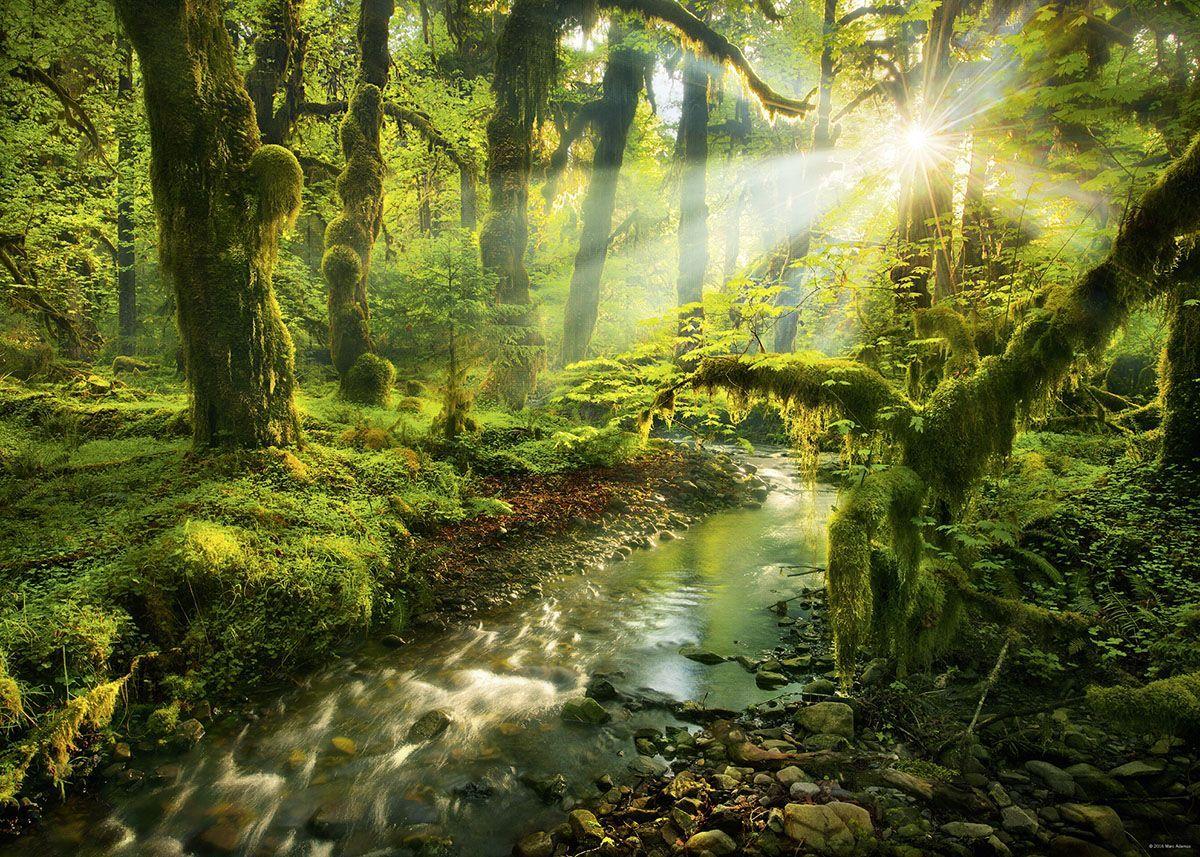 Seni Rupa 2 Dimensi Adalah Dan Contohnya Nature Photography Earth Photography Beautiful Landscape Photography