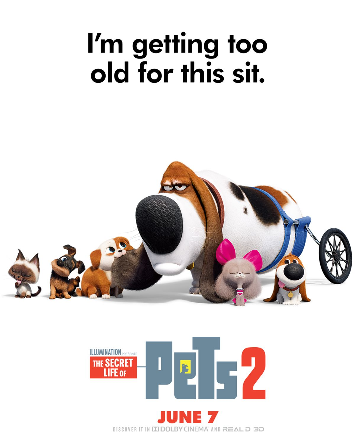 Dana Carvey is Pops. The pets return this summer in the