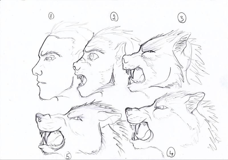 werewolf transform by BlueWolf2995.deviantart.com on
