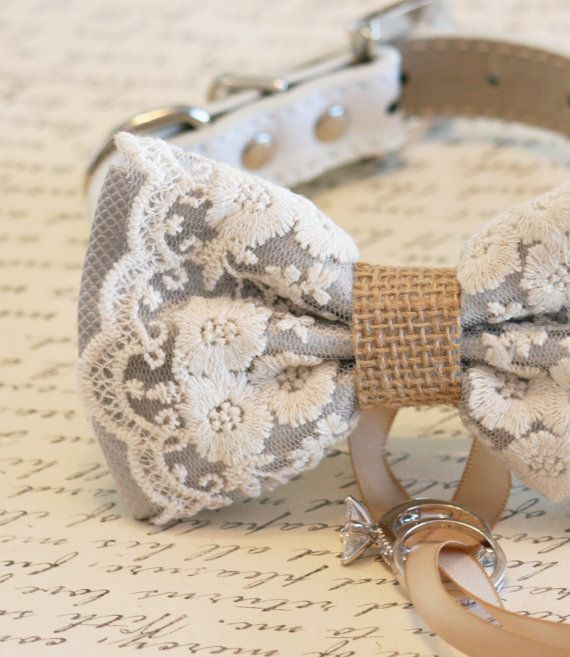 dog of honor Dog Ring Bearer Charcoal Lace dog bow tie collar Proposal Handmade wedding