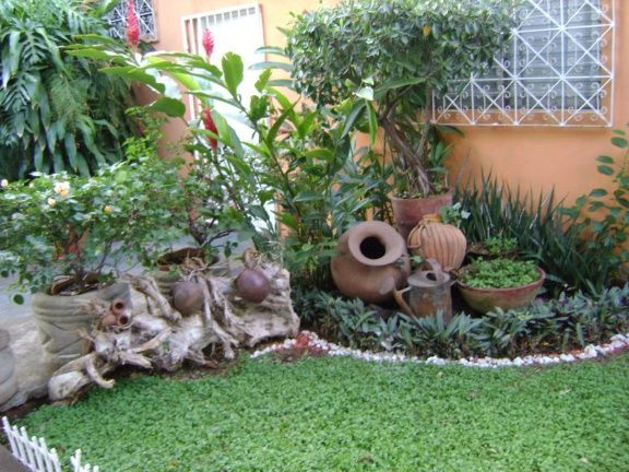 mexican gardens | Garden and landscape | Pinterest | Mexican garden ...