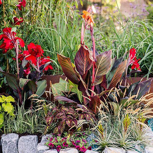 8 Ideas for a Tropical-Themed Garden | Tropical garden, Landscaping ...