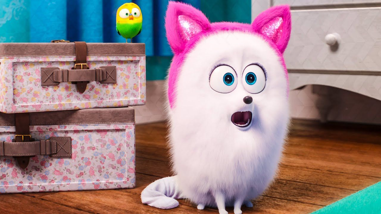 Gidget Learns How To Be A Cat THE SECRET LIFE OF PETS 2