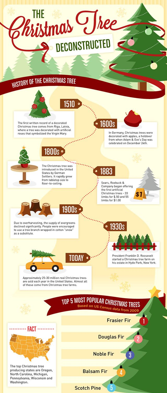 Real History Of Christmas.Discover The History Of The Christmas Tree Infographic
