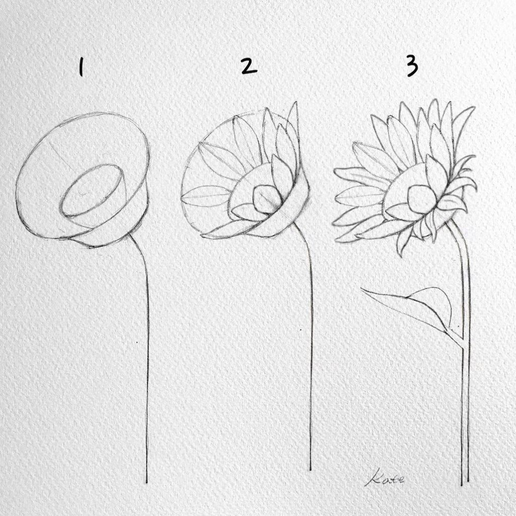 Artist Hue Best Creative Ideas Blog For Artists And Creators How To Draw Flowers Step By S In 2020 Flower Drawing Tutorials Easy Flower Drawings Sunflower Drawing
