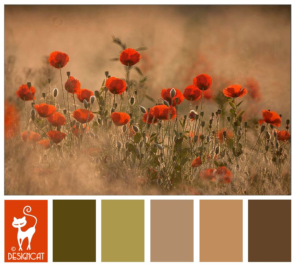 autumn poppy - burnt orange, green, sage, leaf, beige, sand, brown