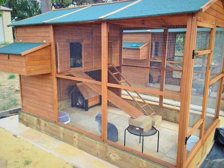 Cat Run Cat Hotel Cat Enclosure Outdoor Cat House