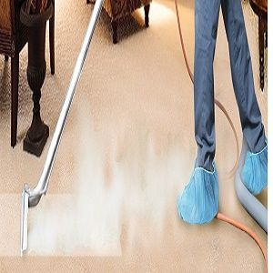 Are You Looking To Get Your Carpet Cleaned Today You Are At The Right Place Bright N Shine Cl How To Clean Carpet Cleaning Upholstery Carpet Cleaning Service