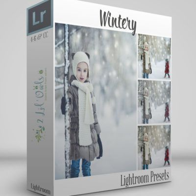 Wintery | Lightroom Presets | 2 Lil Owls Studio