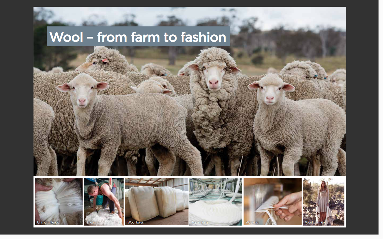 F-2 (D&T: ACTDEK003) This PDF on the process of wool would be great for exploring which animals can provide food and materials for clothing. Discuss the further possibilities and processes of using sheep for food. As well as what products are made of wool.