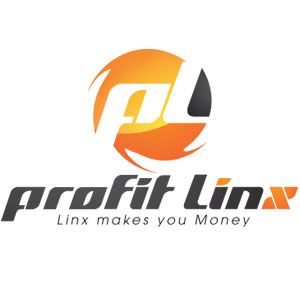 How do you know when your online marketing efforts are successful? Profit Linx is dedicated to finding the optimal ways to ensure your online marketing success and growth