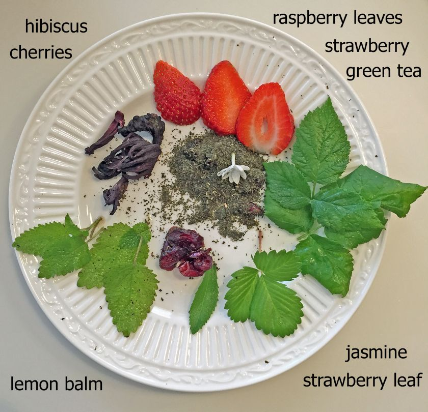 6ec27f681277 Fruit and Herbal green tea  hibiscus