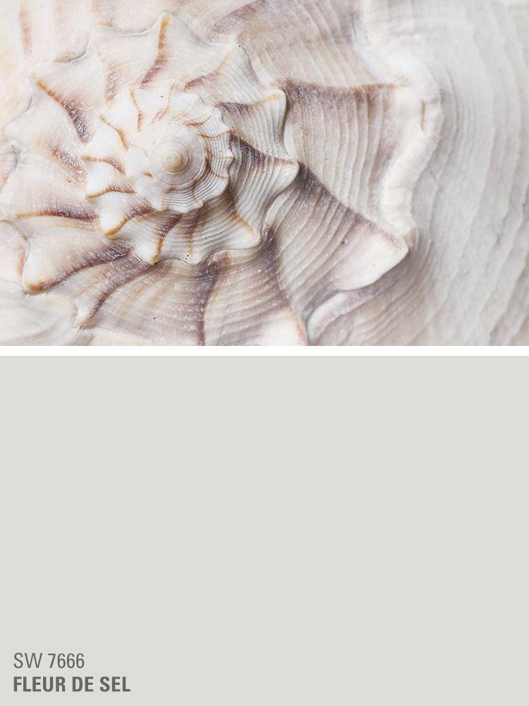 Sherwin Williams White Paint Color Fleur De Sel Sw 7666