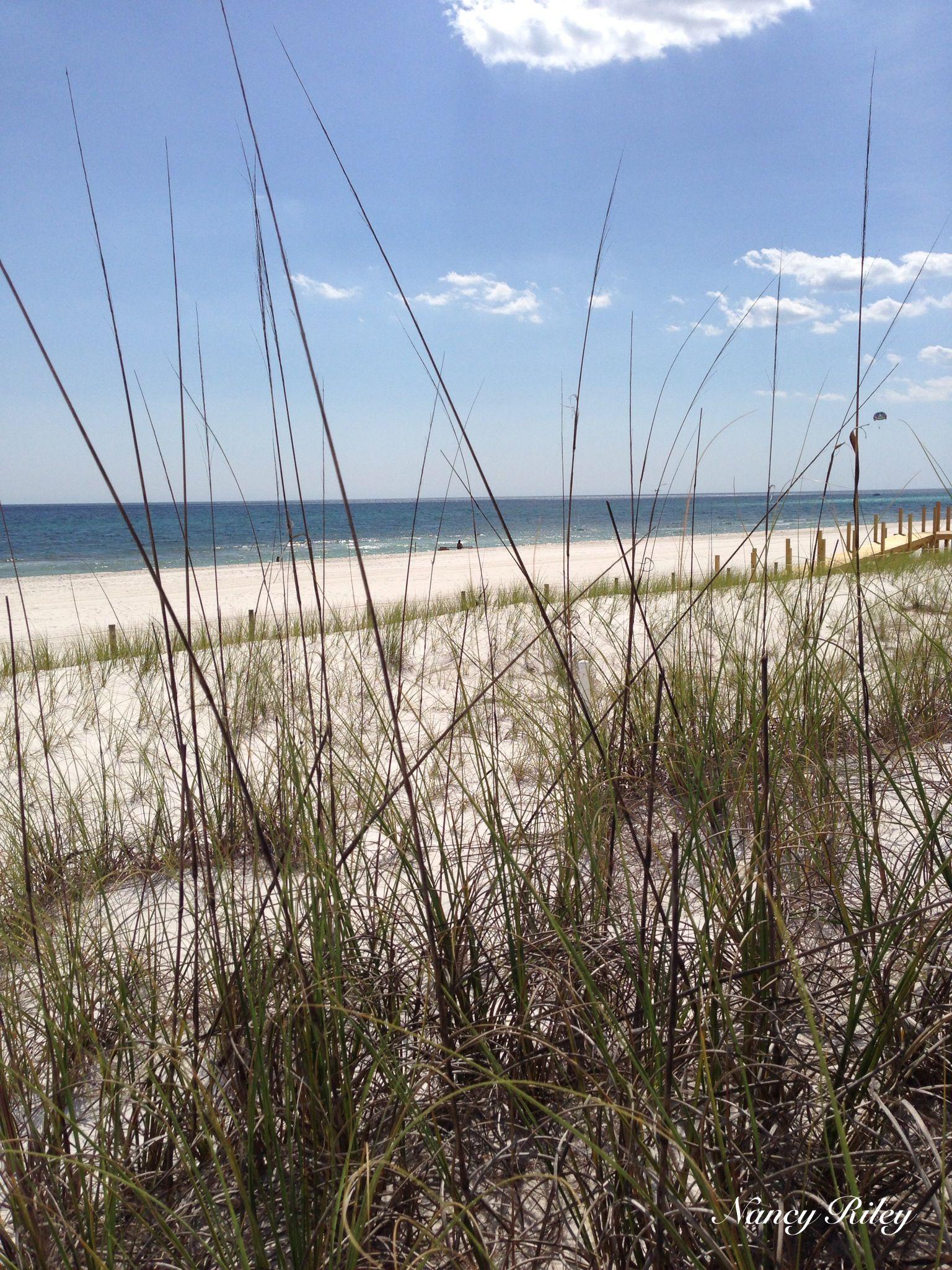 My Ocean View